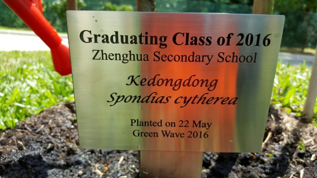 Green Wave 2016_1