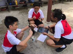 Humanities-Maths Trail at Pang Sua Pond - Testing of the water quality